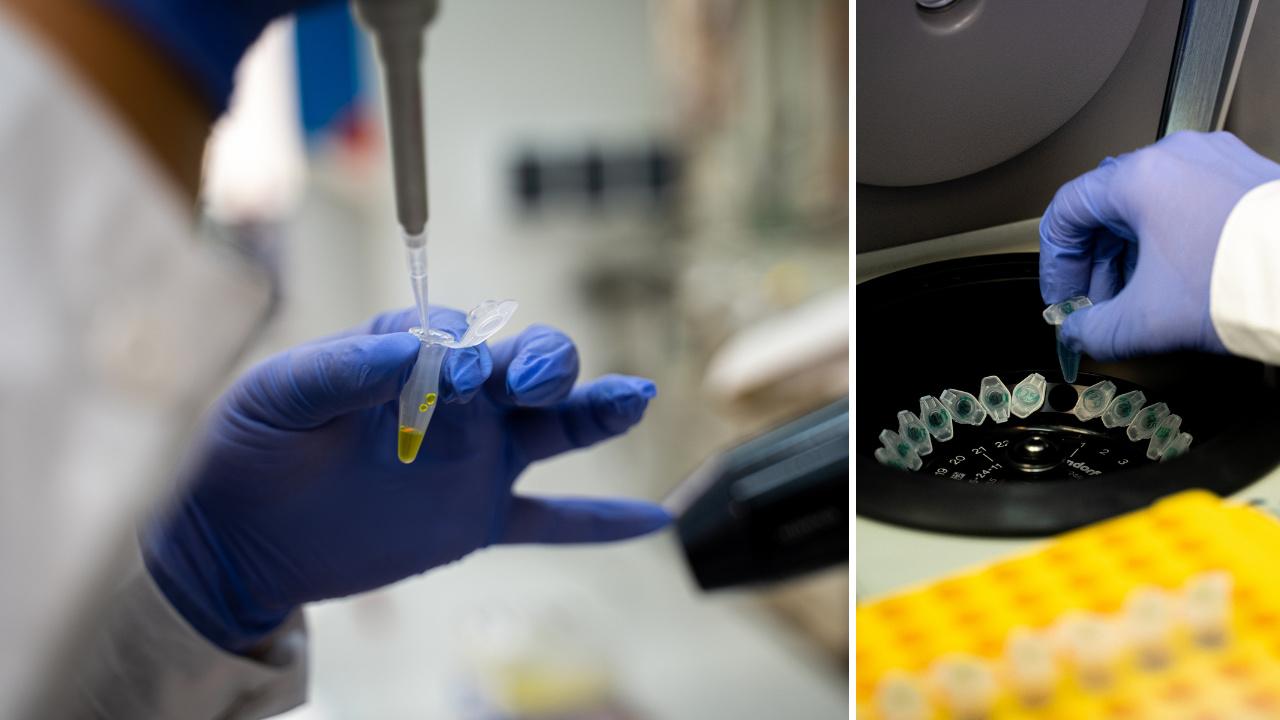 Nowe_laboratorium_diagnostyki_molekularnej_20210525max.jpg