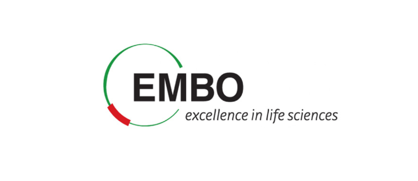 embo-www-news.jpg